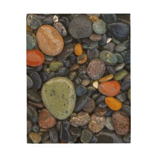 米国、ワシントン州のローペッツの島、瑪瑙のビーチ ウッドウォールアート