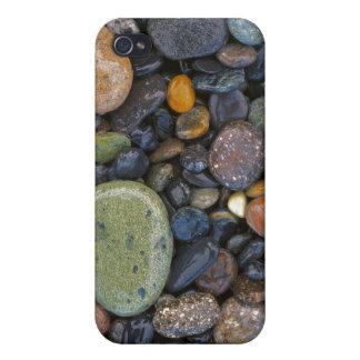 米国、ワシントン州のローペッツの島、瑪瑙のビーチ iPhone 4/4S カバー