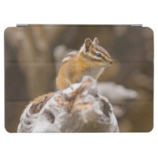 米国、ワシントン州の北の滝の国立公園9 iPad AIR カバー