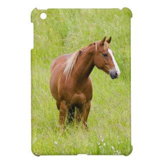 米国、ワシントン州の春分野の馬、 iPad MINIケース