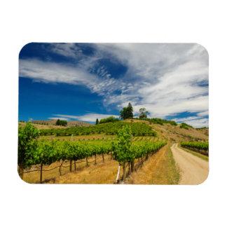 米国、ワシントン州の湖Chelan。 ブドウ園3 マグネット