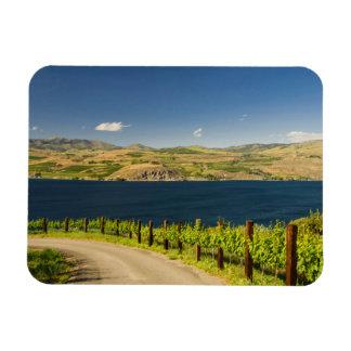 米国、ワシントン州の湖Chelan。 ブドウ園 マグネット