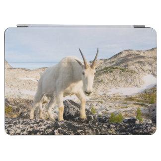 米国、ワシントン州の滝の範囲3 iPad AIR カバー