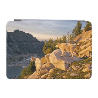 米国、ワシントン州の滝の範囲4 iPad MINIカバー