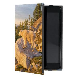 米国、ワシントン州の滝の範囲4 iPad MINI ケース