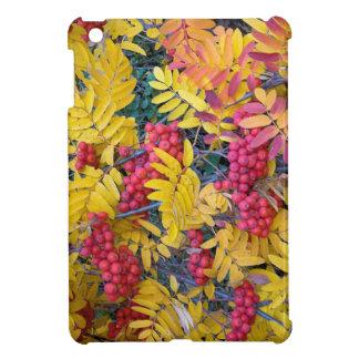 米国、ワシントン州の西部のナナカマド、Okanogan iPad Miniケース