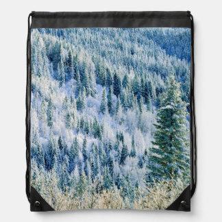 米国、ワシントン州のMt.スポケーンの州立公園、《植物》アスペン2 ナップサック