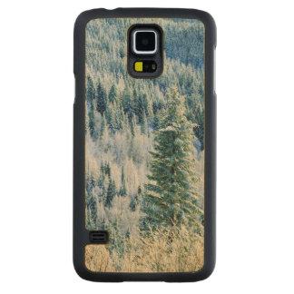 米国、ワシントン州のMt.スポケーンの州立公園、《植物》アスペン2 CarvedメープルGalaxy S5スリムケース