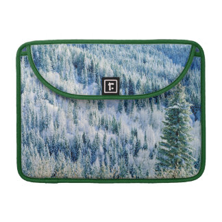 米国、ワシントン州のMt.スポケーンの州立公園、《植物》アスペン2 MacBook Proスリーブ