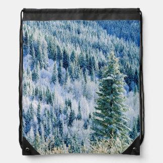 米国、ワシントン州のMt.スポケーンの州立公園、《植物》アスペン ナップサック