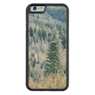 米国、ワシントン州のMt.スポケーンの州立公園、《植物》アスペン CarvedメープルiPhone 6バンパーケース