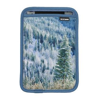 米国、ワシントン州のMt.スポケーンの州立公園、《植物》アスペン iPad Miniスリーブ