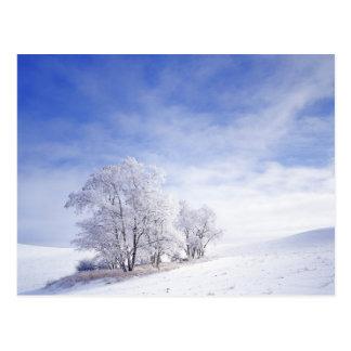 米国、ワシントン州のPalouse区域、曇らされた黒 ポストカード