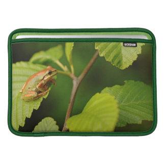 米国、ワシントン州、シアトルの発見公園 MacBook スリーブ