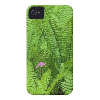 米国、ワシントン州、シアトル、ワシントン州公園 Case-Mate iPhone 4 ケース