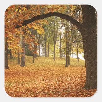米国、ワシントン州、スポケーンのManito公園、秋2 スクエアシール