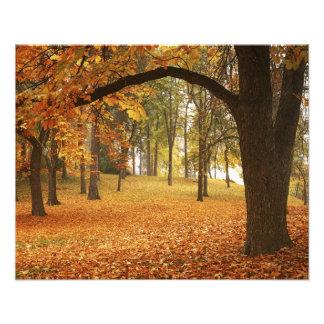 米国、ワシントン州、スポケーンのManito公園、秋2 フォトプリント
