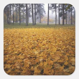 米国、ワシントン州、スポケーンのManito公園、秋 スクエアシール