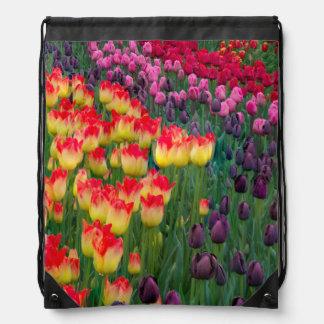 米国、ワシントン州。 咲くチューリップ2 ナップサック