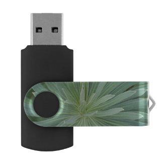 米国、ワシントン州、Bellevue、Bellevue植物の4 USBフラッシュドライブ