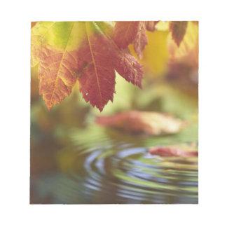米国、ワシントン州、Bellinghamの秋のクローズアップ ノートパッド