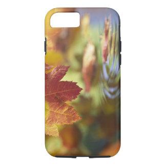米国、ワシントン州、Bellinghamの秋のクローズアップ iPhone 8/7ケース