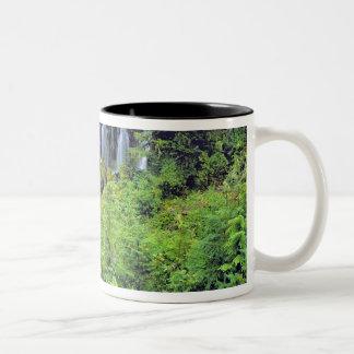 米国、ワシントン州、Mtアダムスの荒野。 双生児 ツートーンマグカップ