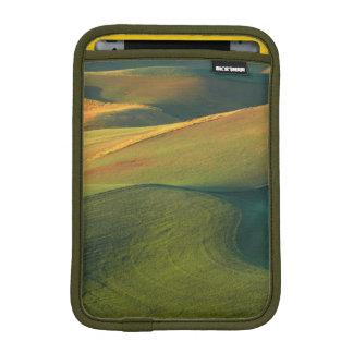 米国、ワシントン州、Palouse、Whitman郡 iPad Miniスリーブ