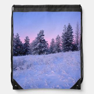 米国、ワシントン州、Spokane郡のBrowne山 ナップサック