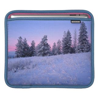 米国、ワシントン州、Spokane郡のBrowne山 iPadスリーブ