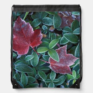 米国、ワシントン州、Spokane郡、かえでの葉2 ナップサック