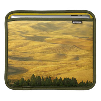米国、ワシントン州、Whitman郡、Palouseのムギ iPadスリーブ