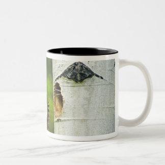 米国、ワシントン州、Yakima。 プリーツをつけられる男性 ツートーンマグカップ