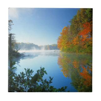 米国、ヴァージニアの妖精の石造りの州立公園 タイル