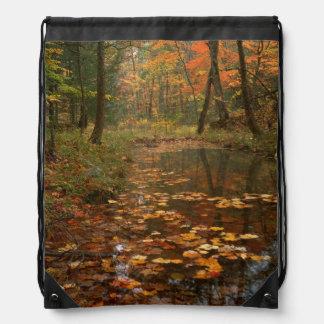 米国、ヴァージニアのDouthatの州立公園の秋 ナップサック