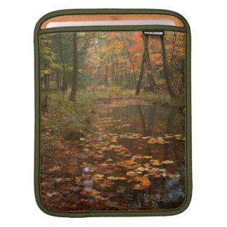 米国、ヴァージニアのDouthatの州立公園の秋 iPadスリーブ