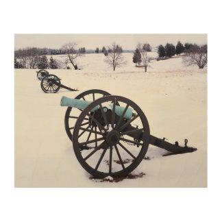 米国、ヴァージニアのManassasの国民の戦場 ウッドウォールアート