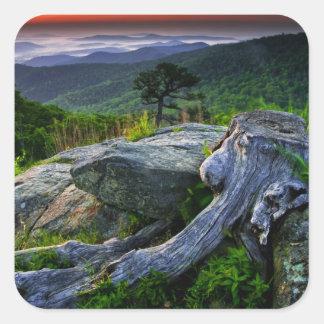 米国、ヴァージニアのShenandoahの国立公園 スクエアシール