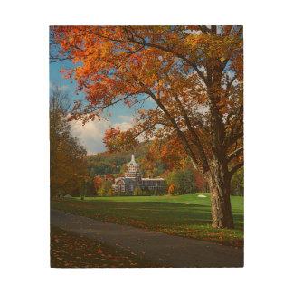 米国、ヴァージニア、Hot Springsの家屋敷 ウッドウォールアート
