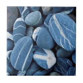 米国、ヴァーモントの湖Champlainの石 タイル