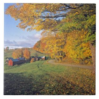 米国、ヴァーモントのJenneの農場。 秋はJenneに来ます タイル