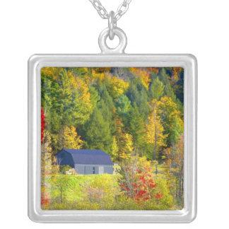 米国、ヴァーモント。 ハイウェー100に沿う秋のfoilage シルバープレートネックレス
