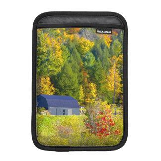 米国、ヴァーモント。 ハイウェー100に沿う秋のfoilage iPad miniスリーブ