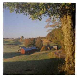 米国、ヴァーモント、南WoodstockのJenneの農場の タイル