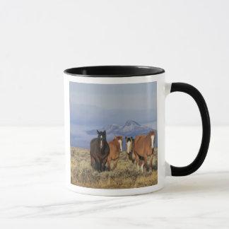 米国、馬のCodyのグループの近くのワイオミング、ハート マグカップ