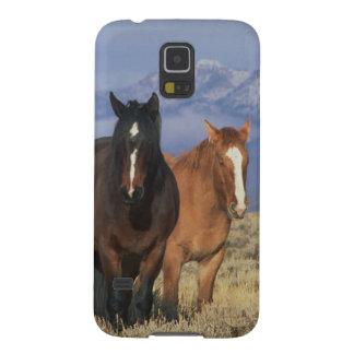 米国、馬のCodyのグループの近くのワイオミング、ハート Galaxy S5 ケース