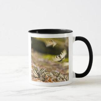 米国、TN、Tellico。 アゲハチョウの蝶 マグカップ