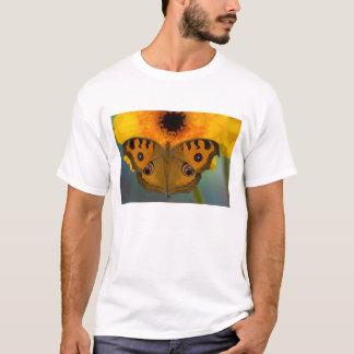 米国、WA、Sammamish、熱帯Butterfy 2 Tシャツ