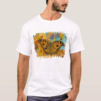 米国、WA、Sammamish、熱帯Butterfy 3 Tシャツ