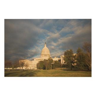 米国、Washington D.C.の国会議事堂の建物 ウッドウォールアート